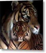Twin Souls Metal Print