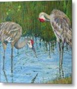 Two Cranes Metal Print