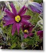 Welcome To The Garden Metal Print