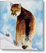 Winter Cougar Metal Print