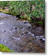 Middle Fork Of Williams River Metal Print