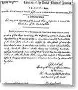 13th Amendment, 1865 Metal Print