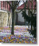Old Park Cemetery Northeim  Metal Print