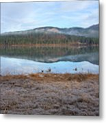 Palsko Lake Metal Print