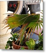 1926 Model T And Plants Metal Print