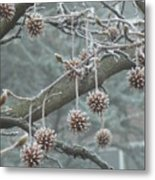 19th January Metal Print