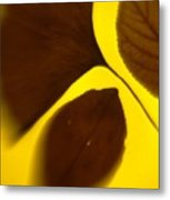 3 Leaves Series Metal Print