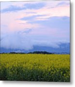 rapeseed field in Brnik with Kamnik Alps in the background Metal Print