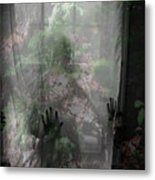 Window Wonder Metal Print