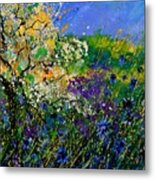 Blue Cornflowers  Metal Print