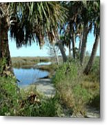 St Mark's Lagoon Metal Print