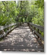 Turkey Creek Metal Print