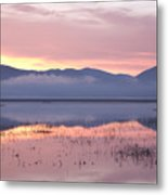 Cerknica Lake At Dawn Metal Print