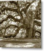 Angel Oak Live Oak Tree Metal Print by Dustin K Ryan