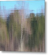 6001-reflections Metal Print
