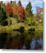 A Colorful Reflection Metal Print