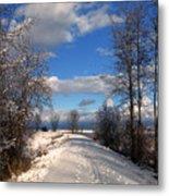 A Kootenai Wildlife Refuge Winter Metal Print