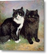 A Pair Of Pussy Cats Metal Print