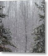 A Snowy Day In The Woods Metal Print