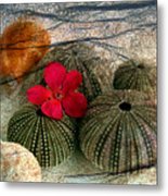 A Soft Touch Metal Print