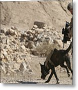A Soldier And His Dog Search An Area Metal Print