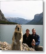 A Squirrel Takes The Shot By Tripping Metal Print by Melissa Brandts/National Geographic My Shot