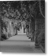 A Stroll Under The Vines Bw Metal Print