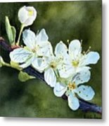 A Touch Of Innocence Metal Print by Bobbi Price