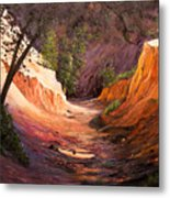 A Walk Through The Canyon Metal Print
