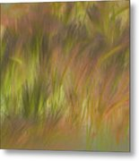 Abstract Grasses Metal Print by Ron Hoggard