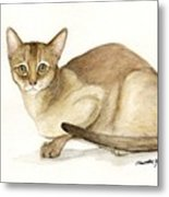 Absyssinian Cat Metal Print