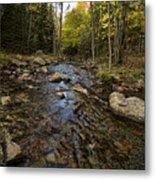 Acadia Waterscape Metal Print