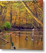 Adventure And Discovery Metal Print