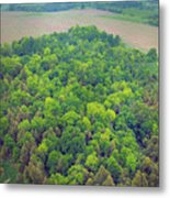 Aerial Forest Metal Print