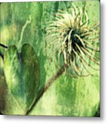 After The Bloom Metal Print
