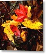 After The Rains Of Autumn Metal Print