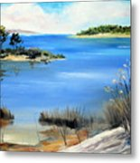 Afternoon Water Metal Print