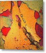 Aging In Colour 6 Metal Print
