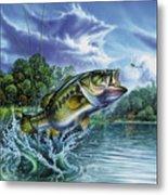 Airborne Bass Metal Print by Jon Q Wright