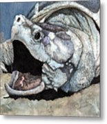 Alligator Snapping Turtle Metal Print