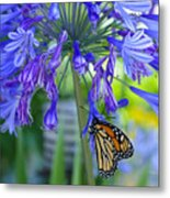 Alone In The Garden Metal Print