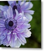 Amazing Purple Metal Print