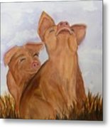 Amused Pigs Metal Print