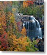 And The Leaves Will Fall Metal Print