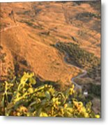 Andalucian Golden Valley Metal Print