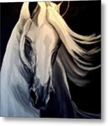 Andalusian Stallion Metal Print