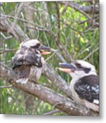 Animated Discussion Metal Print