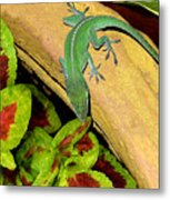 Anole Having A Drink Metal Print