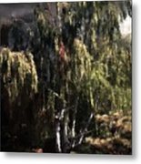 Another Garden Another Midnight Metal Print