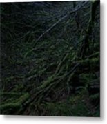 Arboreal Forest Metal Print